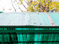 old cracked green polycarbonate panel on roof