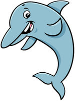 dolphin animal character cartoon illustration