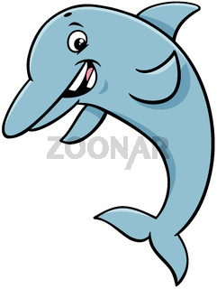 dolphin animal character cartoon illustration