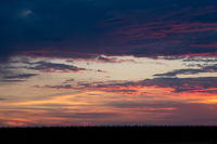 Romantic sunset with black grass silhouette