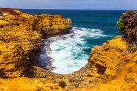 Great Pacific coast