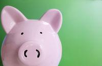 Pink piggy bank on green