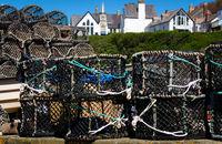 Fisch Reusen - I- Port Isaac- Cornwall - England