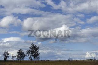 tief hängende Wolken über dem Hochmoor... Hohes Venn * Eifel *