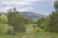Landschaft in Zentralistrien