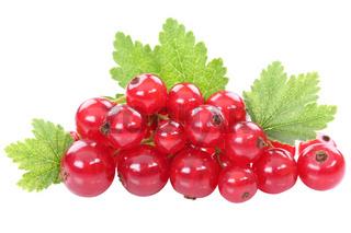 Rote Johannisbeeren Johannisbeere Früchte Frucht Blätter Beeren Obst Freisteller freigestellt isoliert