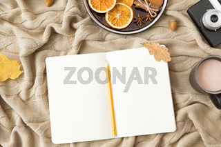 notebook, hot chocolate, camera and autumn leaves