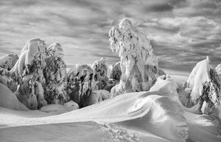 Winterlandschaft im Erzgebirge