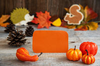 Label With Autumn Decoration, Copy Space, Leaves, Pumpkin