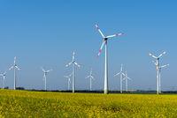 Gelber blühender Raps und Windkraftanlagen