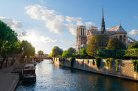 Sunlight on Notre Dame