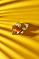 Close up view of yellow ripe, juicy physalis single fruit with striped shadows on a yellow background, soft focus