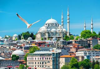 Suleymaniye Mosque in Turkey