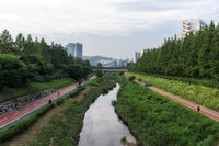 Jogging pathway near Han River