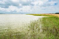 Blick auf den Bodden auf dem Fischland-Darß in Born