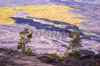 Volcanic Landscape in Volcanoes National Park, Big Island, Hawaii