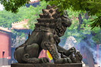 Lama Yonghe Temple in Beijing China