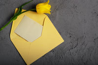 Yellow tulip near blank greeting card and envelope on grey background with space for text