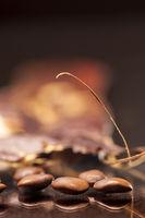 rohe Samen mit der Gleditsia triacanthos_vertical
