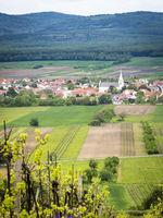 Village and vineyards in Burgenland