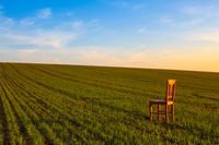 Sunset with old chair in the spring field.