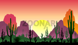 Stony desert with cacti