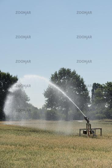 Beregnungsanlage... Rekordsommer 2018 *Nordrhein-Westfalen*, für viele Landwirte eine Katastrophe