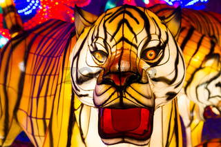Chinese Lantern Festival Chinese New Year Tiger Lantern