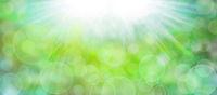 natur abstrakt texturen banner bokeh