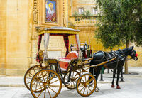 carriage with horse waiting in the historic center