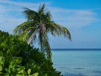 Türkises Wasser am Indischen Ozean Strand auf den Malediven