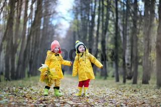 Children are walking in the autumn park