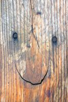 lachendes Gesicht im Brett