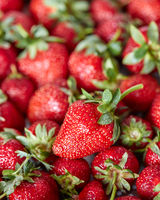 Healthy ripe strawberry. Organic freshly picked berry with green leaves. Food background. Top view