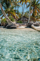 small island with palm trees and bungalow / house -