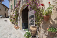 Flower decorated facade picturesque Valldemossa