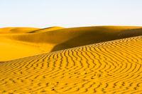 Thar Desert Dunes at Sunset