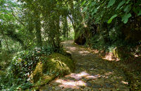 The pedestrian route to the Palace of Pena. Sintra. Portugal