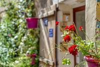 Haustür mit Blumen