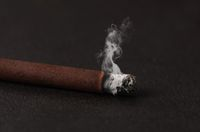 The close-up Tobacco Cigarettes Background or texture