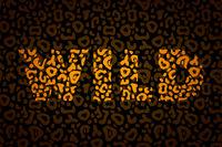 Wild word with orange cartoon leopard skin pattern