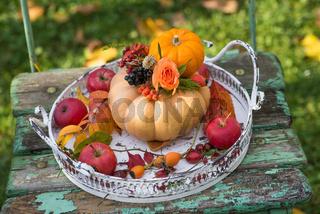 Little pumpkins with flower on a tablett