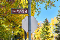 Street in Aspen town at autumn