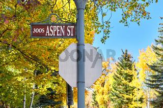 Street in Aspen town at autumn