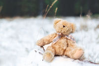 Teddy bear on a snow covered log in winter