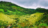The Horton Plains. Beautiful landscape. Sri lanka panorama