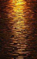 Golden Reflected Sunlight Abstract