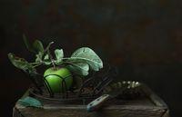 Stillleben mit Gartenapfel