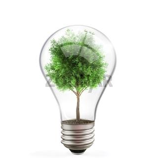 Green energy concept, tree inside light bulb