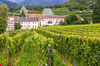 Kloster Neustift mit Weinbergen, Brixen, Italien, Monastery Neustift with vineyards, Brixen, Italy